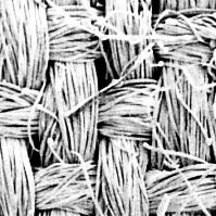 富士絹という平織物です。