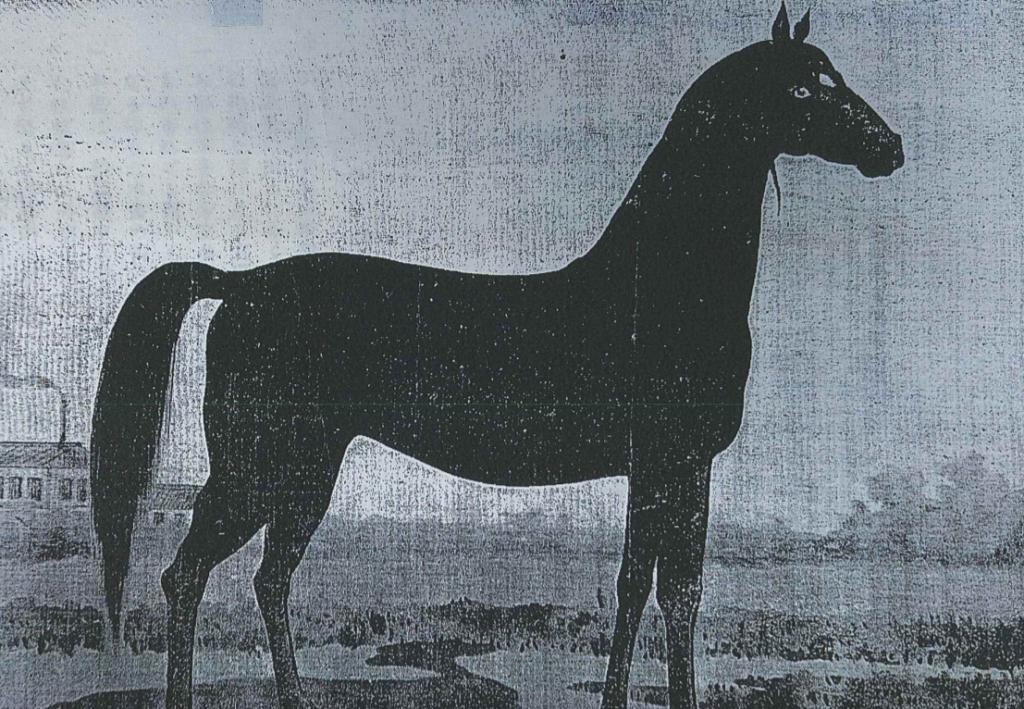 シルクに関連する馬です。